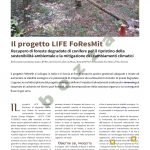 Shw228-Foresmit_rev-1