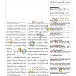 Shw228-Foresmit_rev-3