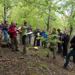 NBP Med forests WS 9-11may16 (52)