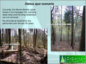 Paletto_Landscape_Ecology_Halle-10