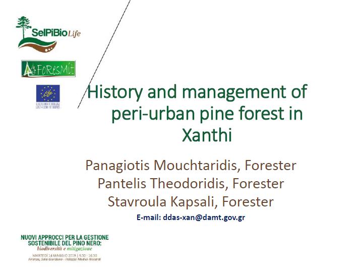 03_PANAGIOTIS_SelPiBio-Foresmit-Presentazione Damt final