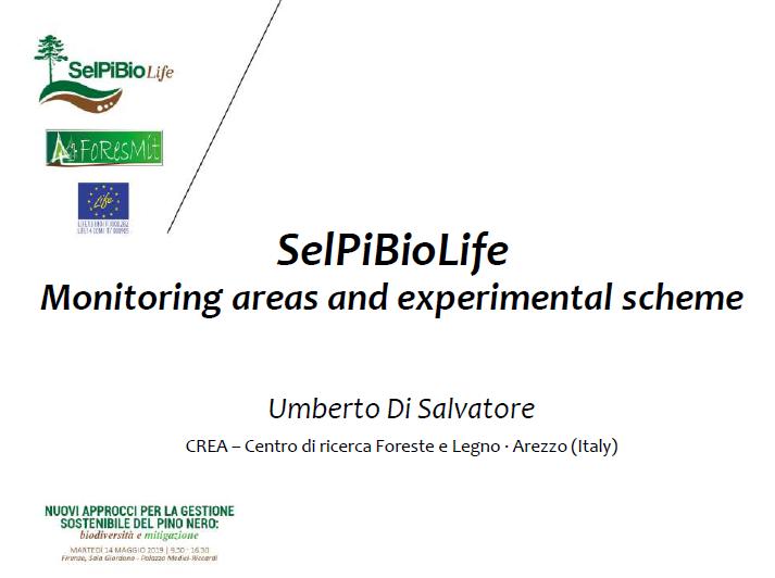 04_UMBERTO DI SALVATORE_SelPiBio_Presentazione_Umberto_Di Salvatore