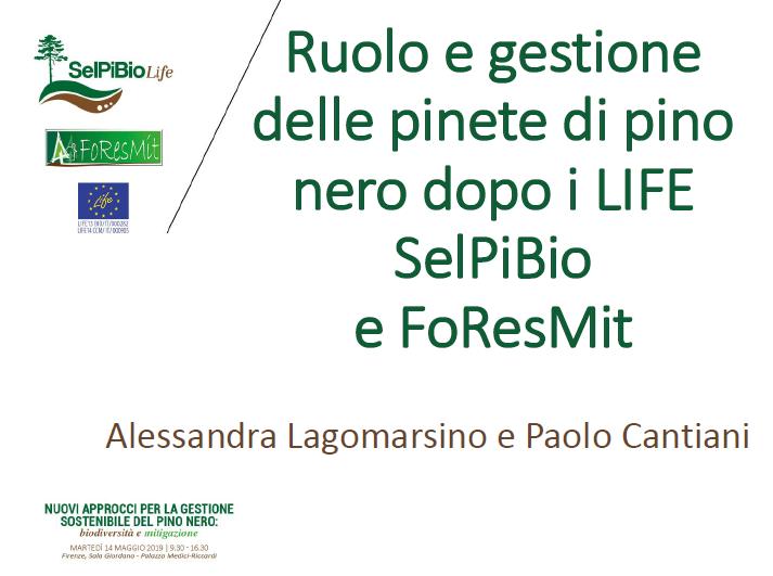 16_CANTIANI_SelPiBio-Foresmit-conclusioni (1)
